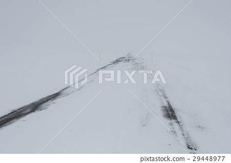 冰島 29448977