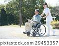 高級男性和輪椅照顧者 29453357