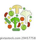 蔬菜 向量 向量圖 29457758