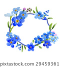 Wildflower myosotis arvensis flower wreath in a 29459361