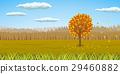 Autumnal orangy yellow landscape 29460882
