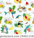 bird, birds, fowls 29461158