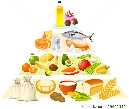 Food pyramid 29463553