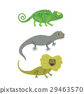 Different kind of lizards icons set. 29463570