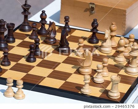 체스 29465376