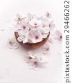 Cherry Blossom 29466262