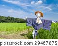 見沼稻田 稻草人 有名無實的領袖 29467875