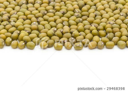 Mungbean: Mung Bean 29468398