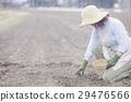 栽種 原野 田地 29476566