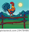 Vector illustration of a rooster 29478486