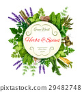 Fresh herbs and spices round label for food design 29482748