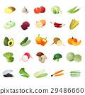 vegetable, tomato, carrot 29486660