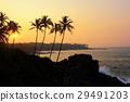 sunset landscape tropical 29491203