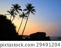 sunset landscape tropical 29491204