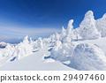 摻鋁氧化鋅 覆有霜的樹 冰霜覆蓋的樹木 29497460