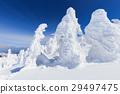 zao, frost covered tree, sunny 29497475
