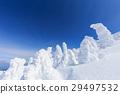 摻鋁氧化鋅 覆有霜的樹 冰霜覆蓋的樹木 29497532