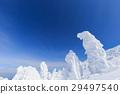 摻鋁氧化鋅 覆有霜的樹 冰霜覆蓋的樹木 29497540