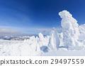 摻鋁氧化鋅 覆有霜的樹 冰霜覆蓋的樹木 29497559