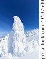 摻鋁氧化鋅 覆有霜的樹 冰霜覆蓋的樹木 29497600