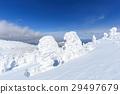 摻鋁氧化鋅 覆有霜的樹 冰霜覆蓋的樹木 29497679
