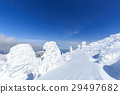 摻鋁氧化鋅 覆有霜的樹 冰霜覆蓋的樹木 29497682