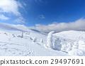 摻鋁氧化鋅 覆有霜的樹 冰霜覆蓋的樹木 29497691