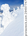 摻鋁氧化鋅 覆有霜的樹 冰霜覆蓋的樹木 29497747