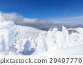 摻鋁氧化鋅 覆有霜的樹 冰霜覆蓋的樹木 29497776