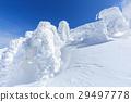 摻鋁氧化鋅 覆有霜的樹 冰霜覆蓋的樹木 29497778