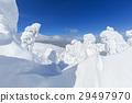 摻鋁氧化鋅 覆有霜的樹 冰霜覆蓋的樹木 29497970