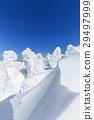 摻鋁氧化鋅 覆有霜的樹 冰霜覆蓋的樹木 29497999