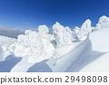 摻鋁氧化鋅 覆有霜的樹 冰霜覆蓋的樹木 29498098
