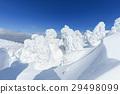 摻鋁氧化鋅 覆有霜的樹 冰霜覆蓋的樹木 29498099