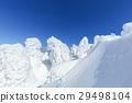 摻鋁氧化鋅 覆有霜的樹 冰霜覆蓋的樹木 29498104