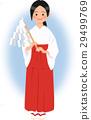 female, lady, woman 29499769