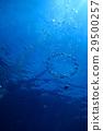 海 大海 海洋 29500257
