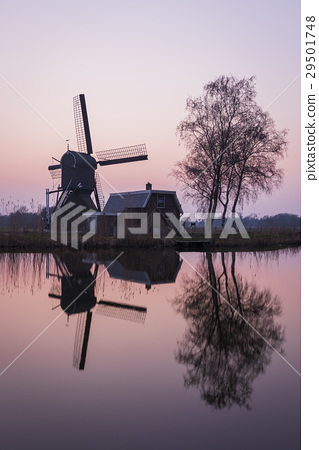 Mill and Tree at Woerdense Verlaat 29501748