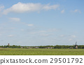 Friesland, grassland, mill 29501792