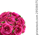 Bouquet of Roses Flowers Festive Congratulation 29506075