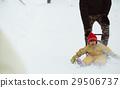 積雪 下雪 雪 29506737