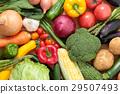 蔬菜 素食 著了色的 29507493