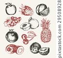 水果 苹果 矢量 29508928