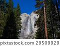 瀑布 公園 約塞米蒂國家公園 29509929