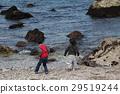 해변에서 노는 아이 29519244