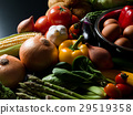 蔬菜 食品 原料 29519358