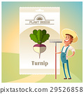 Pack of Turnip seeds icon 29526858