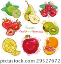 vector set with fresh fruits and berries 29527672