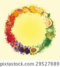 vector fruit background 29527689