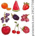 水果 插图 矢量 29527708